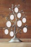Εικόνα του εκλεκτής ποιότητας παλαιού κλασσικού πλαισίου του οικογενειακού δέντρου Στοκ Εικόνα