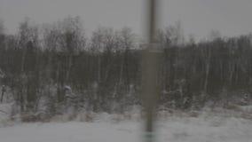 Εικόνα του χειμερινού δάσους από την κίνηση του τραίνου απόθεμα βίντεο