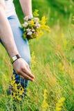 Εικόνα των αρσενικών χεριών λυσσασμένων ένα πράσινο wildflower στοκ εικόνες