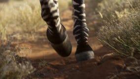 Εικόνα των ζεδών ποδιών στο ρύπο στοκ εικόνες με δικαίωμα ελεύθερης χρήσης