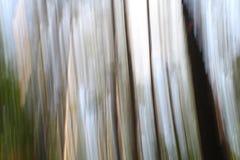 Εικόνα υποβάθρου της ονειροπόλου έννοιας στα ξύλα, με την τεχνική γνωστή ως βράση ` ` Στοκ Φωτογραφίες