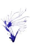 Εικόνα υποβάθρου στοκ εικόνα με δικαίωμα ελεύθερης χρήσης