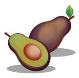 Εικόνα φρούτων αβοκάντο Ελεύθερη απεικόνιση δικαιώματος