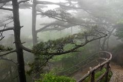 Εικόνα Huangshan (κίτρινο βουνό) Στοκ φωτογραφίες με δικαίωμα ελεύθερης χρήσης