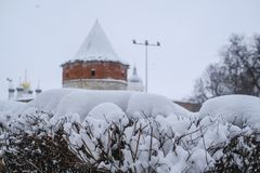 εικόνα snowdrift στο θάμνο στοκ εικόνες με δικαίωμα ελεύθερης χρήσης