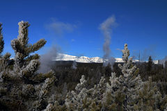 Εικόνα Wintertime στο εθνικό πάρκο Yellowstone Στοκ Εικόνα