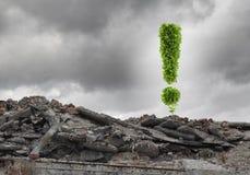 εικόνες οικολογίας έννοιας πολύ περισσότεροι το χαρτοφυλάκιό μου Στοκ Φωτογραφίες