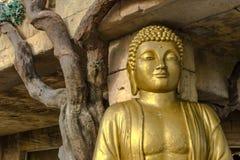 Εικόνες του Βούδα, γλυπτό, αρχιτεκτονική της Ταϊλάνδης, watpho Βούδας Στοκ εικόνα με δικαίωμα ελεύθερης χρήσης