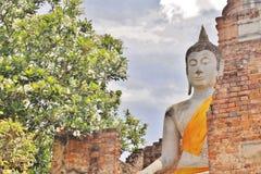 Εικόνες του Βούδα, Wat Yai Chai Mongkol, Ayutthaya, Ταϊλάνδη Στοκ Φωτογραφία