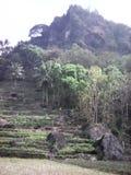Εικόνες του φυσικού τοπίου το πρωί και το βράδυ στοκ φωτογραφίες