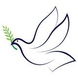 ειρήνη περιστεριών Στοκ εικόνα με δικαίωμα ελεύθερης χρήσης