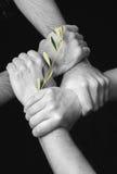 ειρήνη που ενώνεται Στοκ Εικόνες