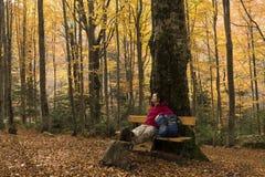 Ειρήνη φθινοπώρου στοκ φωτογραφία με δικαίωμα ελεύθερης χρήσης