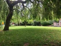 Ειρηνικά πάρκα στοκ εικόνες