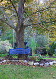Ειρηνική θέση σε Meditate Στοκ φωτογραφία με δικαίωμα ελεύθερης χρήσης