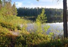 Ειρηνική καρελιανή λίμνη Στοκ εικόνα με δικαίωμα ελεύθερης χρήσης