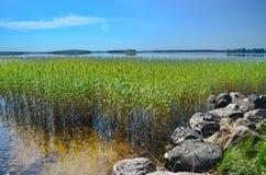 Ειρηνική καρελιανή λίμνη Στοκ εικόνες με δικαίωμα ελεύθερης χρήσης