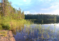 Ειρηνική καρελιανή λίμνη Στοκ φωτογραφίες με δικαίωμα ελεύθερης χρήσης