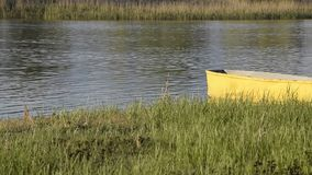 Ειρηνική ροή ποταμών και ένα κίτρινο αλιευτικό σκάφος στη χλοώδη ακτή απόθεμα βίντεο
