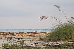 Ειρηνική σκηνή ακτών στους κοκοφοίνικες Cayo, Κούβα στοκ φωτογραφίες με δικαίωμα ελεύθερης χρήσης