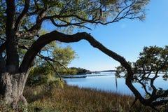 Ειρηνική σκηνή εδάφους της βόρειας Καρολίνας παράκτια Στοκ φωτογραφία με δικαίωμα ελεύθερης χρήσης
