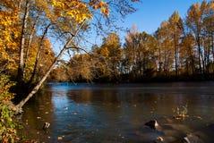 ειρηνικός ποταμός Στοκ Φωτογραφίες