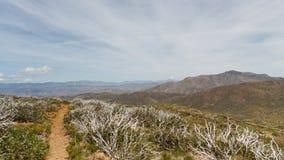 Ειρηνικό ίχνος CREST στην έρημο anza-Borrego Στοκ Εικόνες