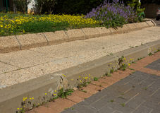 Εισβολή άνοιξη των wildflowers στοκ εικόνες