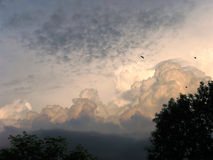 εισερχόμενη θύελλα Στοκ εικόνα με δικαίωμα ελεύθερης χρήσης