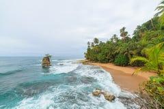 Ειδυλλιακή παραλία Manzanillo Κόστα Ρίκα Στοκ Εικόνες