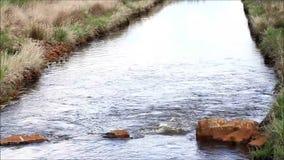 Ειδυλλιακός ποταμός τοπίων με τις πέτρες φιλμ μικρού μήκους