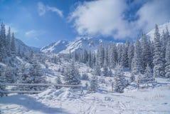 ειδυλλιακός χειμώνας στοκ εικόνα