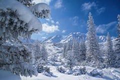ειδυλλιακός χειμώνας στοκ φωτογραφία