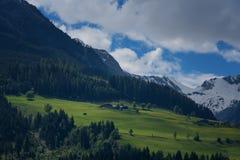 Ειδυλλιακό τοπίο στις Άλπεις στην άνοιξη με το παραδοσιακό σαλέ βουνών και τα φρέσκα πράσινα λιβάδια βουνών με τα λουλούδια Στοκ Φωτογραφίες
