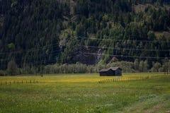 Ειδυλλιακό τοπίο στις Άλπεις στην άνοιξη με το παραδοσιακό σαλέ βουνών και τα φρέσκα πράσινα λιβάδια βουνών με τα λουλούδια Στοκ Εικόνα