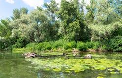 Ειδύλλιο ποταμών σκάφος που βυθίζεται πα& Στοκ Εικόνες