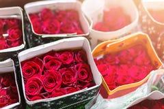 Εκατοντάδες των πολύχρωμων τριαντάφυλλων που τυλίγονται στο έγγραφο λουλούδι ανασκόπησης φρέσκο Επιχείρηση ανάπτυξης και παραγωγή Στοκ Φωτογραφία