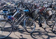 Εκατοντάδες των ποδηλάτων στοκ εικόνες με δικαίωμα ελεύθερης χρήσης
