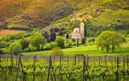 Εκκλησία, αμπελώνες και ελιά Antimo Montalcino Sant Ιταλία Τοσκάνη στοκ εικόνα με δικαίωμα ελεύθερης χρήσης