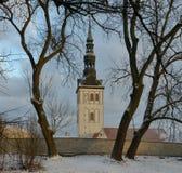 Εκκλησία του Άγιου Βασίλη μέσω των κλάδων των δέντρων Ταλίν στοκ εικόνες