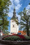 Εκκλησία του Άγιου Βασίλη, Ταλίν, Εσθονία στοκ εικόνα