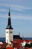 εκκλησία Olaf ST Ταλίν Στοκ Εικόνες