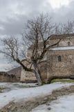 Εκκλησία φρουρίων και παλαιό δέντρο Στοκ Εικόνες