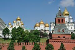Εκκλησίες του Κρεμλίνου και πύργος Taynitskaya - Μόσχα Κρεμλίνο Στοκ εικόνες με δικαίωμα ελεύθερης χρήσης
