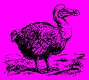 Εκλείψας cucullatus raphus dodo που στέκεται σε ένα τοπίο διανυσματική απεικόνιση