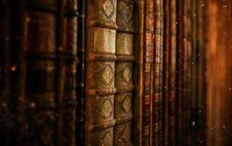 Εκλεκτής ποιότητας βιβλία Antiquarian στην παλαιά βιβλιοθήκη Στοκ Εικόνες
