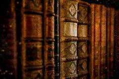 Εκλεκτής ποιότητας βιβλία Antiquarian στην παλαιά βιβλιοθήκη Στοκ εικόνα με δικαίωμα ελεύθερης χρήσης