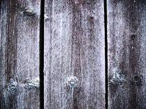εκλεκτής ποιότητας δάσο Στοκ φωτογραφία με δικαίωμα ελεύθερης χρήσης