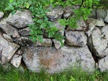 Εκλεκτής ποιότητας ενιαίος τοίχος πετρών στη Μασαχουσέτη Στοκ Φωτογραφίες
