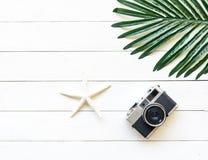 Εκλεκτής ποιότητας κάμερα φωτογραφιών με το ζώο θάλασσας στο ξύλινο λευκό, έννοια τρόπου ζωής Στοκ Εικόνα
